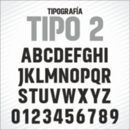 TIPO 2.jpg